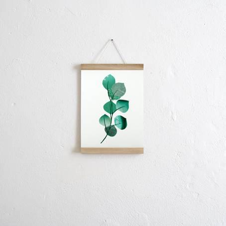Set_Eukalyptus+Posterleiste_Eiche_A4