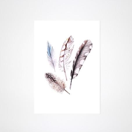 Zeichnung Federn Kunstdruck A4
