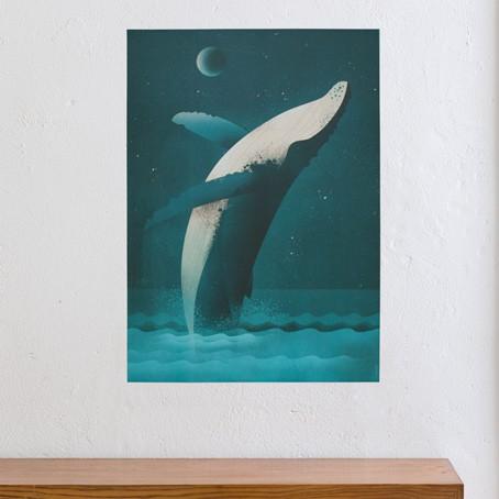 Humpback Whale / SALE