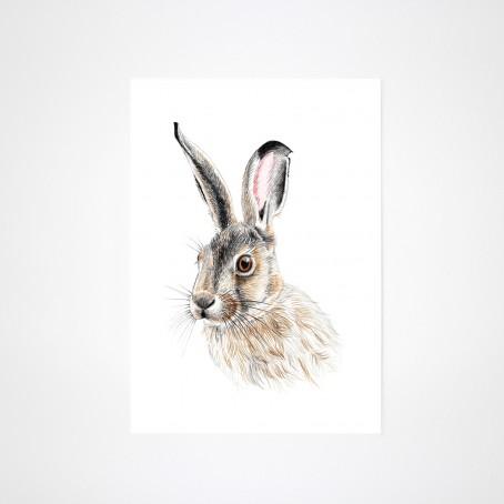 Zeichnung Hase Kunstdruck A4