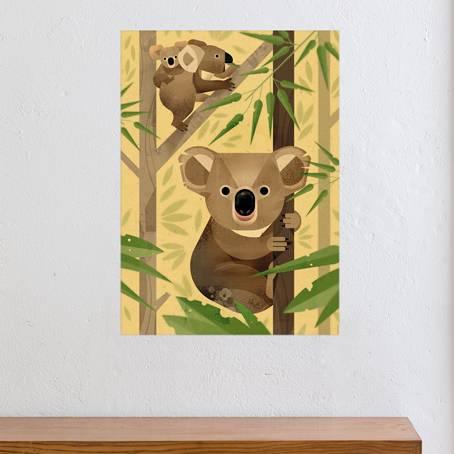 Dieter-Braun-Koala_KVL