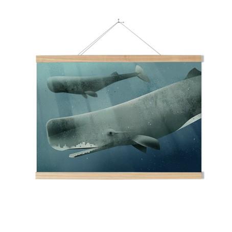 Set / Sperm Whale + Posterleiste Esche 70 cm