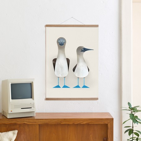 Set / Blue-footed Boobies + Posterleiste Eiche 50 cm