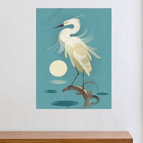 Dieter Braun- Little Egret