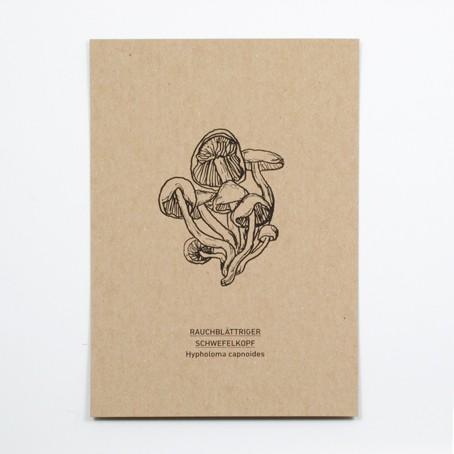 Rauchblättriger Schwefelkopf Postkarte