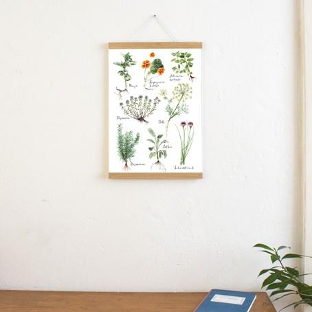SET / Kräuter + Posterleiste Eiche A3