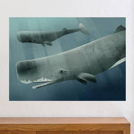 Sperm_Whale-KVL