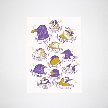 Heimische Vögel Poster