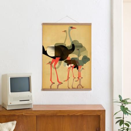 Set / Ostriches + Posterleiste Eiche 50 cm